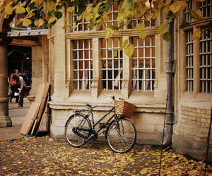 bike, autumn, and vintage image