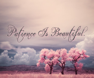 patience, quote, and beautiful image