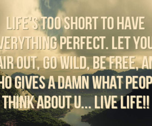 quote, text, and live life .. free .. image
