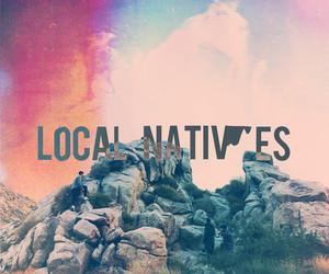 local natives image
