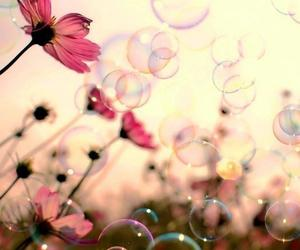 ball, nature, and flowers image