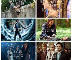 harry potter, percy jackson, and life image