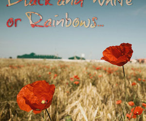 black, poppies, and quotes image