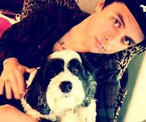 green day, billie joe armstrong, and dog image
