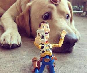 woody, dog, and photo image