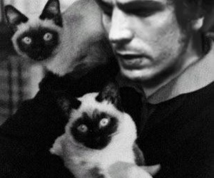 cat, syd barrett, and Pink Floyd image