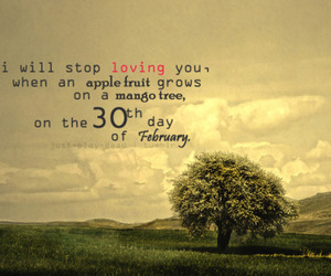 love, quote, and tree image