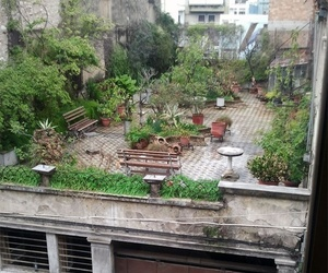 city, garden, and nature image