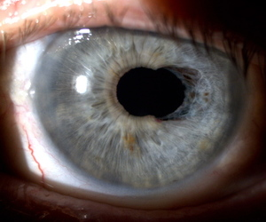 eye, pale, and photography image