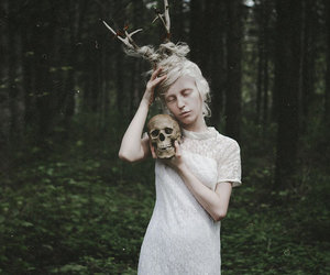 skull and forest image