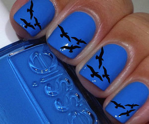 blue, nails, and bird image