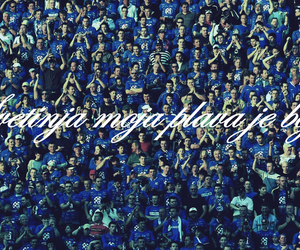 blue, dinamo zagreb, and bad blue boys image