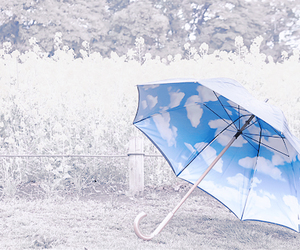 umbrella image