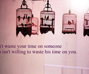 bird, cage, and pink image