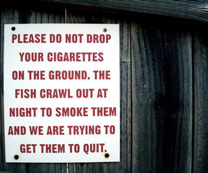 sign, fish, and cigarettes image