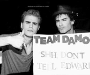 damon, edward, and stefan image