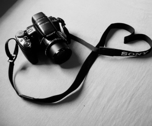camera, heart, and sony image