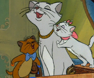 disney, cat, and aristocats image