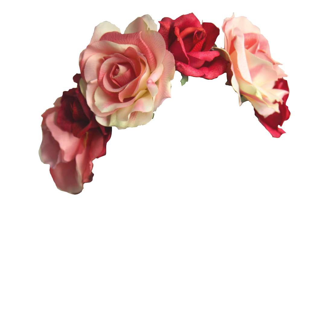 28 images about flowers crowns on we heart it see more about 28 images about flowers crowns on we heart it see more about transparent flower and flower crown izmirmasajfo