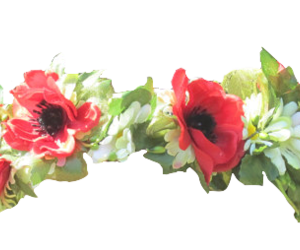 transparent and flower image