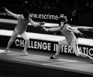fencing and sport image