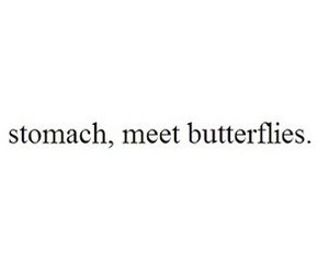 butterflies, love, and meet image