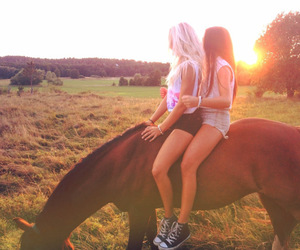 horse, summer, and love image