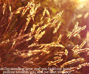 colbie caillat, Lyrics, and colbie image