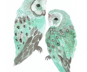 green, owl love, and owl blue image