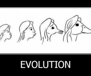 evolution, funny, and duck image