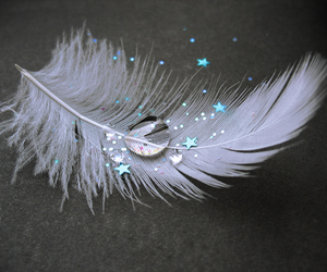 angel, drop, and feather image