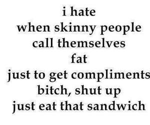 skinny, bitch, and fat image