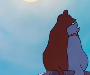 love, aristocats, and cat image