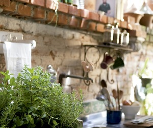herb and kitchen image