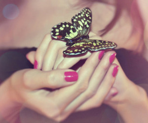 nail polish, butterfly, and hand image