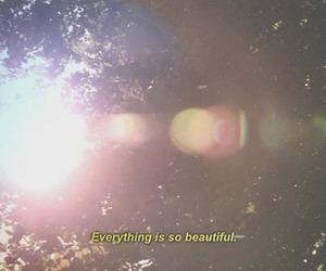 beautiful and sun image