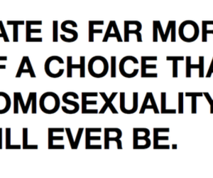 choice, gay, and typography image