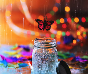 butterfly, colors, and Dream image
