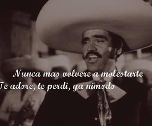 frases, vicente fernandez, and simple image