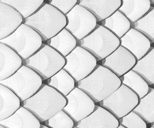 pattern, wallpaper, and white image