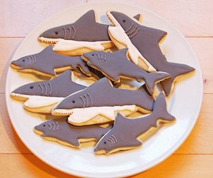 shark and food image