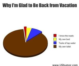 funny, vacation, and lol image