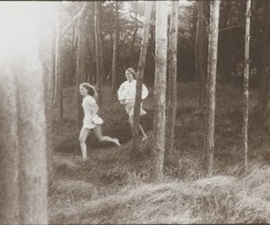 black and white, forest, and running image