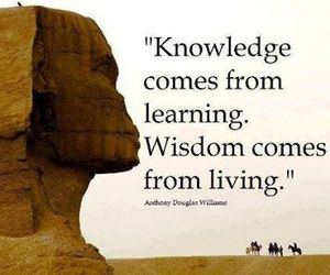 quote, knowledge, and life image