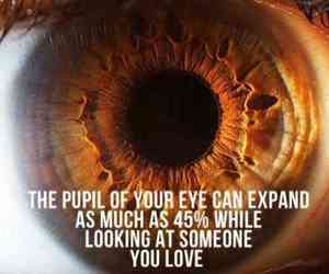 love, eyes, and pupil image