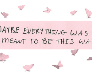quote, pink, and love image