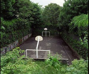Basketball, green, and indie image