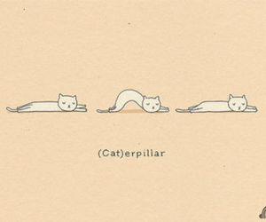 cat, funny, and caterpillar image