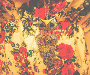 fashion, more jewelry photos, and more fucking owls image