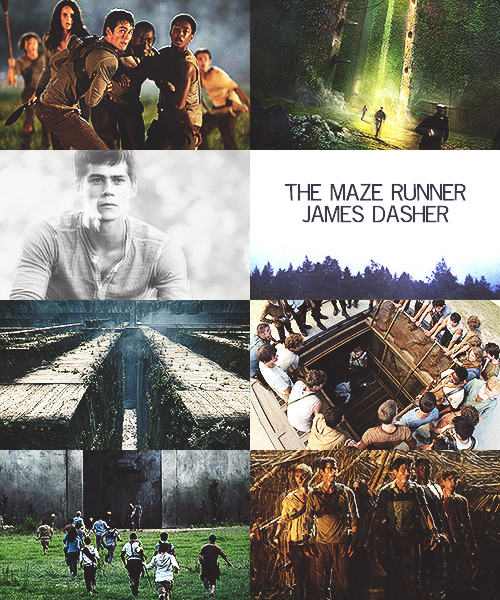 Book report on the maze runner